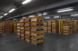 SPDR Gold Trust, Goldlager