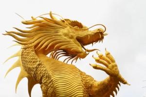 Der chinesischer Golddrache faucht (Foto: Fotolia)