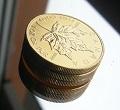 Maple Leaf, Goldmünze, kaufen