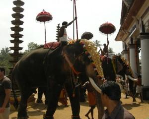Indien Tempel (Foto: Goldreporter)