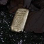 Goldbarren Herbst (Foto-On)