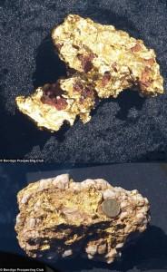 Goldnuggets Prospecting Club
