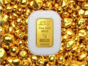 Fair-Trade-Gold ESG b
