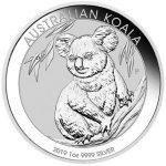 Silber-Koala-2019