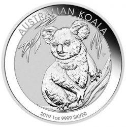 Silber-Koala