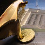 Bull-Fed-Goldreporter