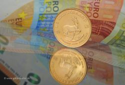 Gold, Krügerrand, Goldmünze, Preis (Foto: Goldreporter)
