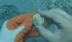 Goldmünzen, Schatz, Florida